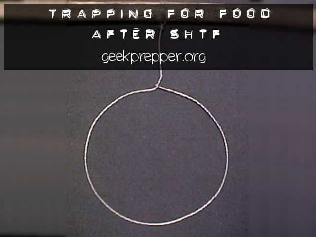 Trapping for Food
