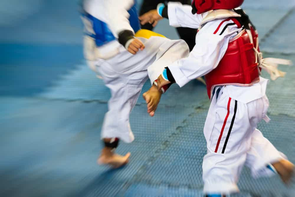 What are the Best Martial Arts for Self Defense? | GeekPrepper