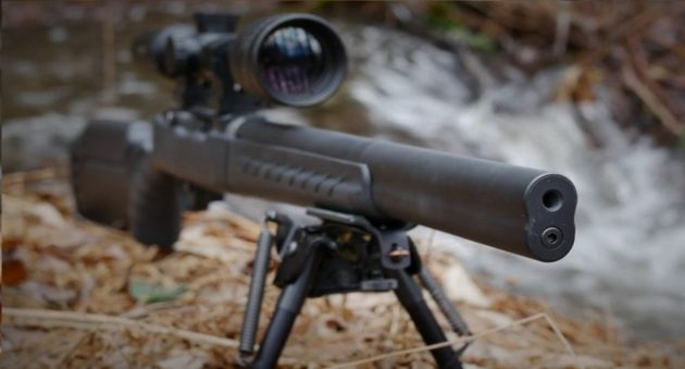 Ruger-10-22-Rifle